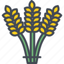 agriculture, business, commodities, crop, trading, wheat icon