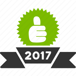 2017 year, achievement, award, best, choice, prize, reward icon