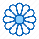blossom, camomile, chamomile, daisy, flower, plant icon