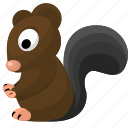 animal, squirrel, wild, zoo icon