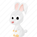 animal, animals, pet, rabbit, zoo icon