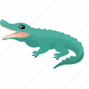 animal, crocodile, zoo icon