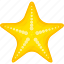 cartoon starfish, halobios, marine organism, sea, starfish icon