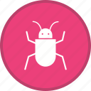 bug, insect, security, spider, virus icon
