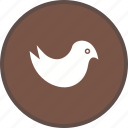 bird, logo, media, social, social media, twitter icon
