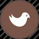 bird, twitter, logo, social media