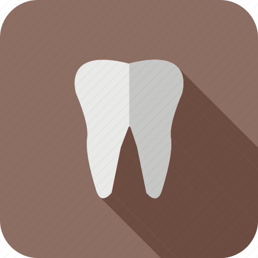 health, healthcare, medical, tooth icon