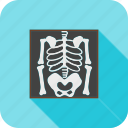 bones, dead, healthcare, medical, skeleton, x rey icon