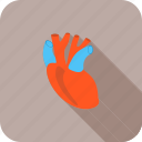health, healthcare, heart, medical, pump icon