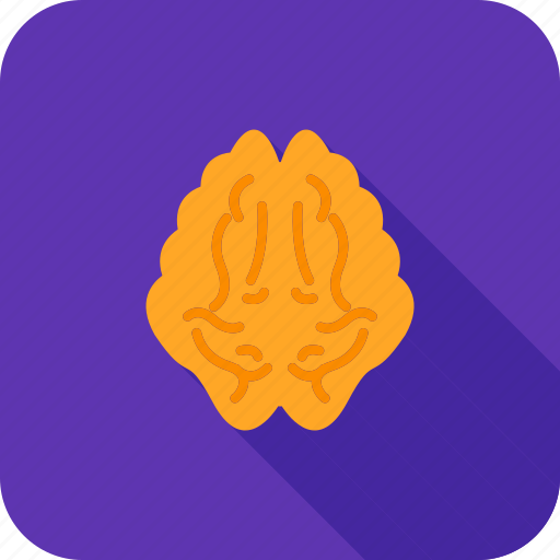 brain, care, health, healthcare, medical icon