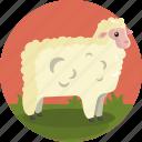 farming, animal, farm, sheep