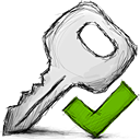 accept, key icon