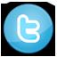 social media, twitter icon