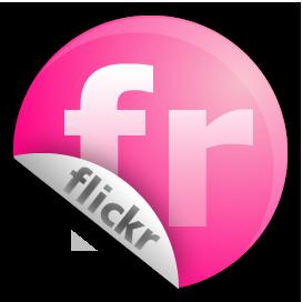 Flickr, fr, sticker icon - Free download on Iconfinder