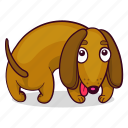 dachshund, dog, puppy icon