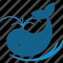 blue, logo, water, whale
