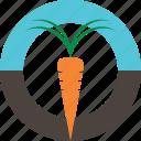 carrot, fresh, logo, organic, vegetable icon