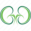 bean, green, healthy, kidney, kidneys icon
