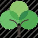 eco, ecology, green, tree icon