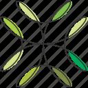 green, herb, illustration, leaves, natural, plant