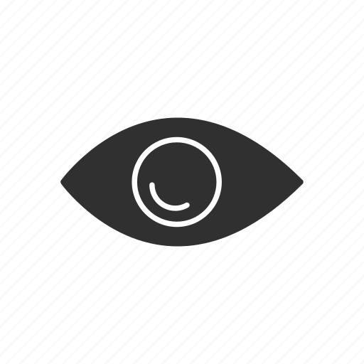 eye, public, seen, view icon