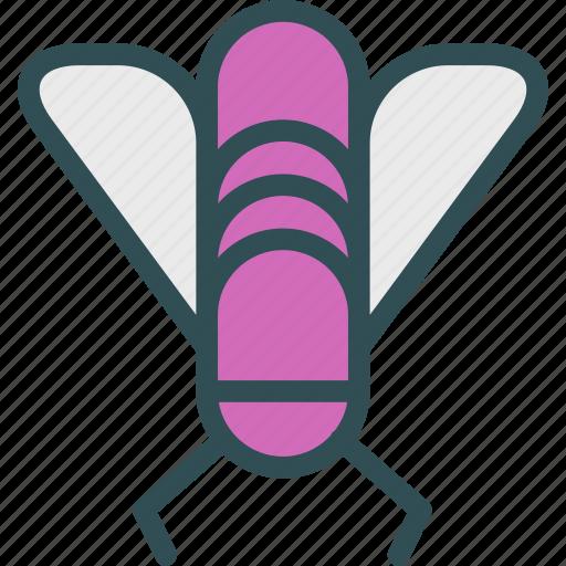 bug, disturb, fly icon