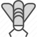 bug, disturb, fly icon