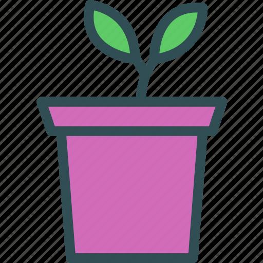 decor, flower, plant, room icon