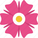 blooming, chamomile, floral, flower, generic flower icon