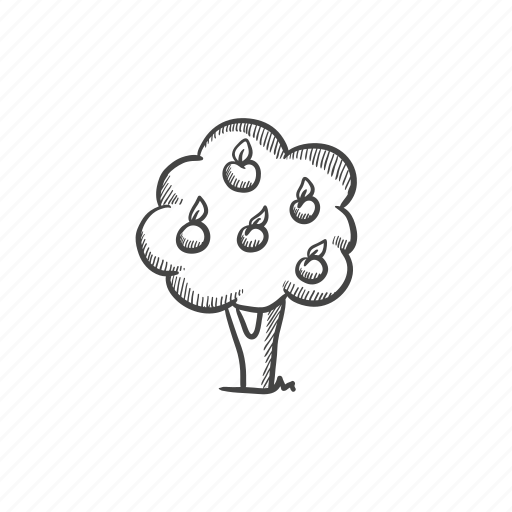 foliage, fruit, garden, gardening, orchard, tree, yield icon