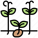 cultivation, germinate, plants, seedling, sprout icon