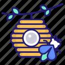 beehive, beekeeping, apiary, bee