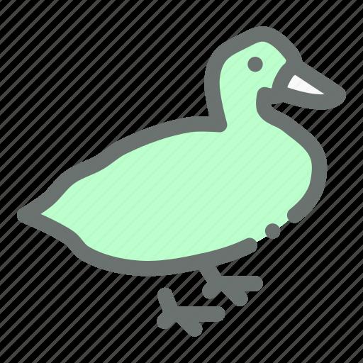 bird, farm, fowl, goose, poultry icon