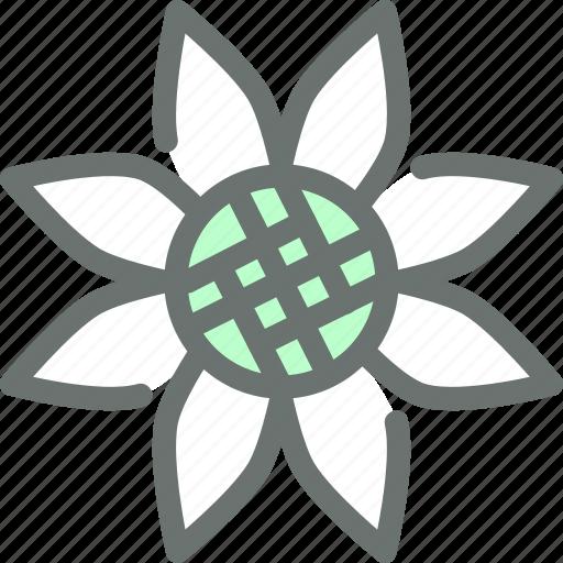 flower, garden, gardening, sunflower icon