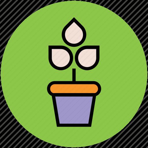gardening, growing plant, natural, plant, plant pot, pot, sapling icon