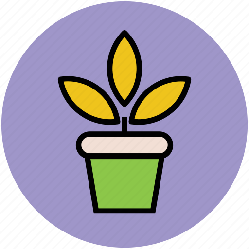 gardening, growing plant, natural, plant, plant pot, pot, sapling icon