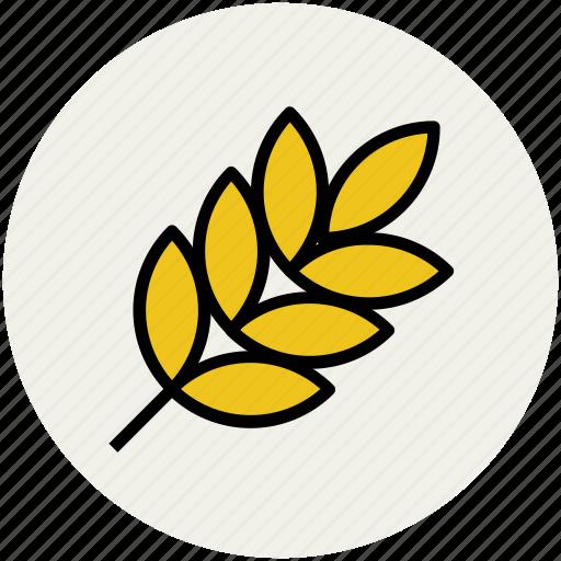 ear of wheat, gluten, grain, grain ear, grain wheat, rye, wheat icon