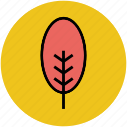 cypress tree, dotted leafs, forest, generic tree, plant, stem tree icon