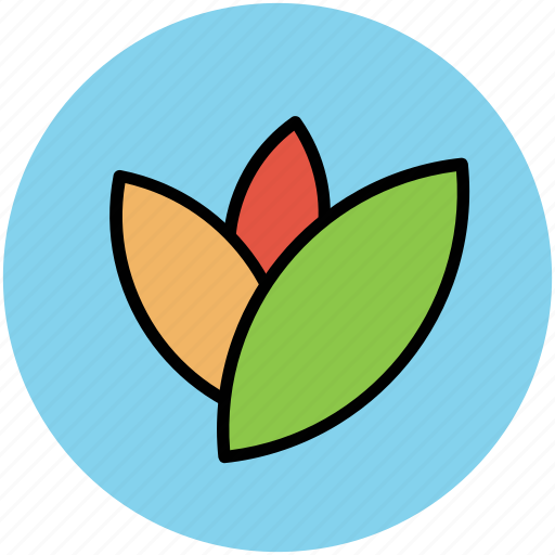 foliage, greenery, leaves, nature, plant leaves icon