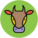 animal, animal head, bull face, cow face, ox head icon