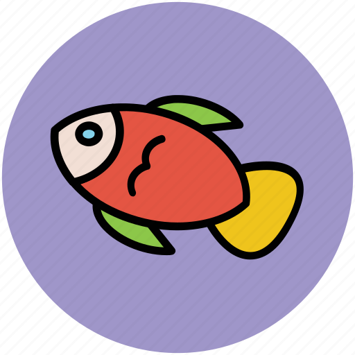 animal, fish, food, healthy food, seafood icon
