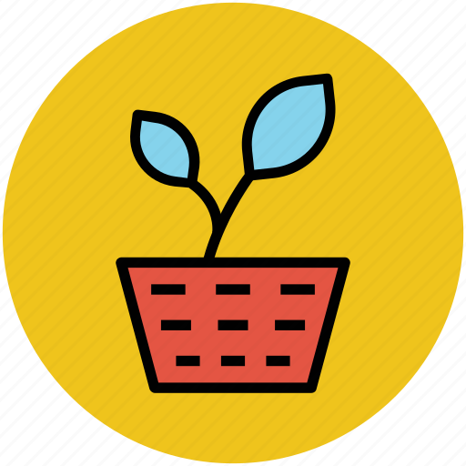 ecology, growing plant, plant, plant leaf, potted plant icon