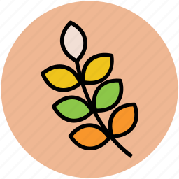 agriculture, botany, ear of wheat, grain, grain ear, wheat icon
