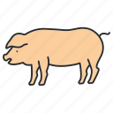 animal, domestic, meat, pig, piggy, piglet, pork icon
