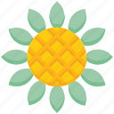 farming, flower, garden, sunflower icon