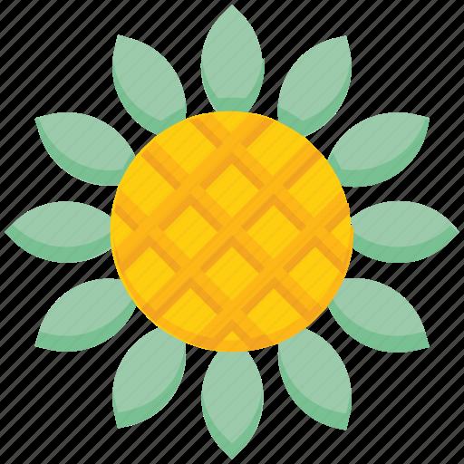 farming, flower, garden, sunflower icon