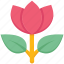 bloom, farming, flower, garden, nature, plant, rose