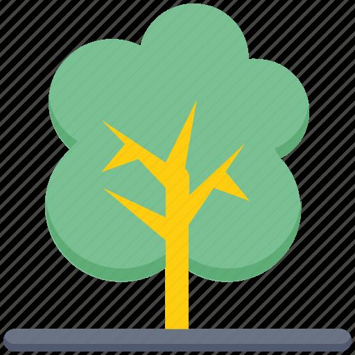 agriculture, farm, farming, fruit, garden, plant, tree icon