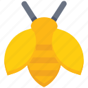 agriculture, bees, farm, farming, fly icon