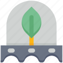 agriculture, farming, garden, gardening, leaf, plant, seed icon